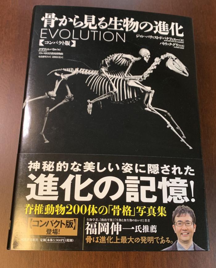 骨から見る生物の進化【コンパクト版】