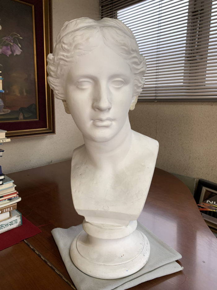 【石膏物語】ミロのヴィーナス胸像 瞬間を捉えた人間らしい造形の秘密とは